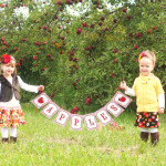 apple orchard banner