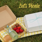 clamshell picnic boxes