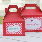 strawberry boxes 2 sizes