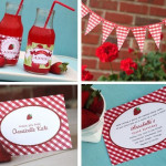 strawberry gingham set