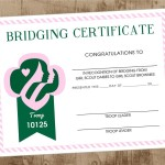 girl scout bridging cert
