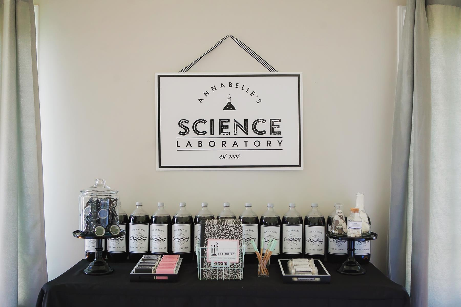 Science Experiment Birthday Party Ideas | The Homespun Hostess